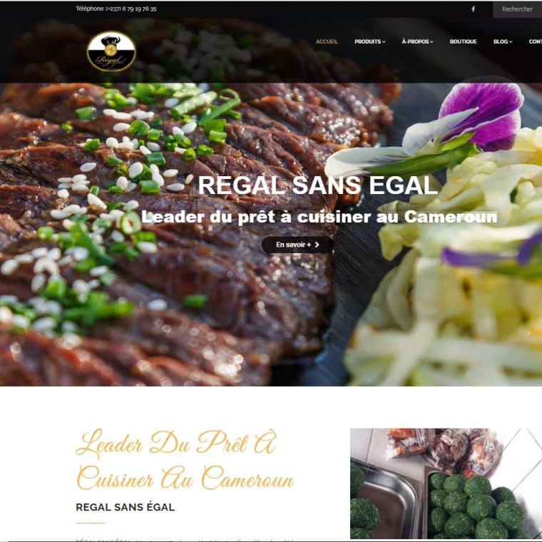 Didacweb création de site web douala